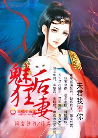 凤霸天下:冷王的替身妃